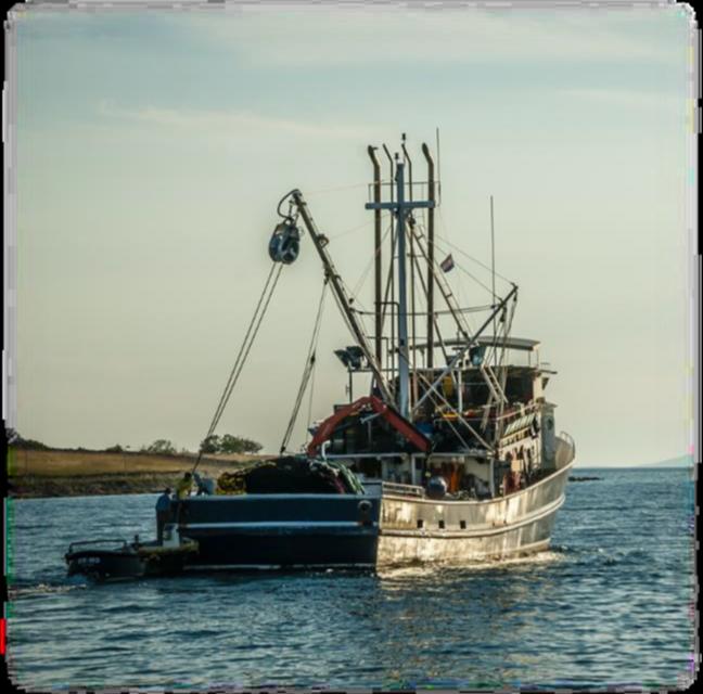 FeSMC-UGT pone en marcha la acción ES2017-0099: Fomento de la PRL en tripulantes de buques pesqueros