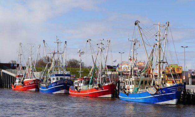 Campaña de prevención de riesgos laborales en buques pesqueros