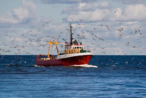 UGT pide que se atiendan las necesidades del sector pesquero, afectado por la crisis del COVID-19